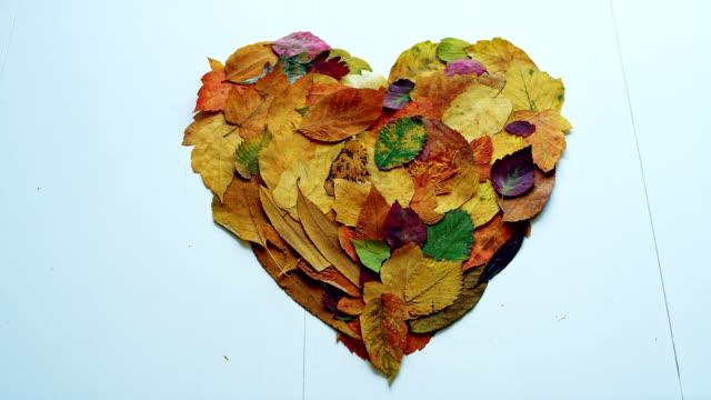 hjärtformad med höst löv blåser bort - höstlöv bildbanksvideor och videomaterial från bakom kulisserna