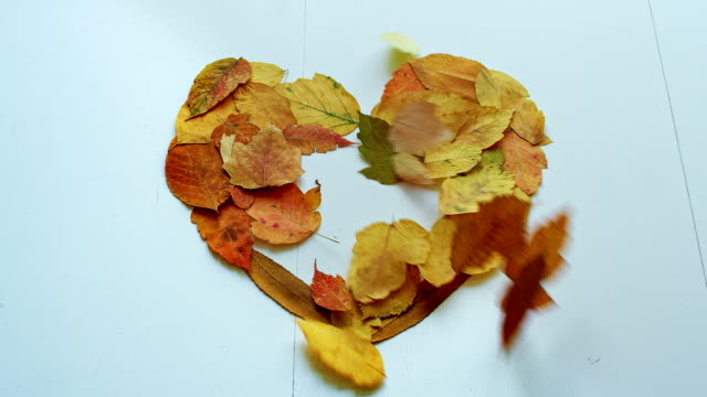 Heart shape with autumn leaves blow away
