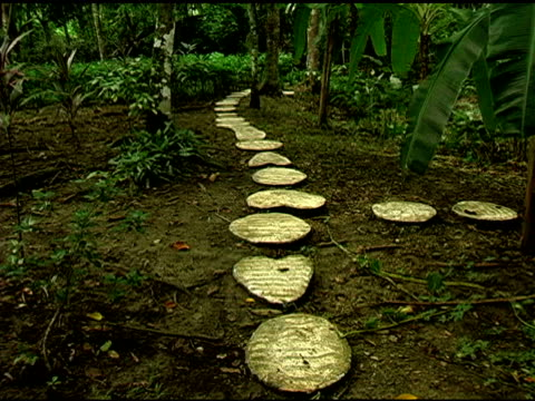Heart Shaped Stone Foot Path in Chiapas Mexico Jungle