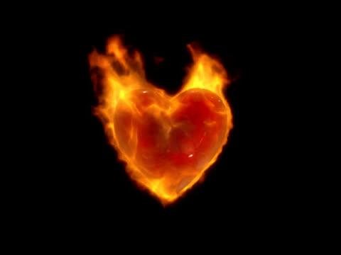 vídeos de stock e filmes b-roll de coração - coração