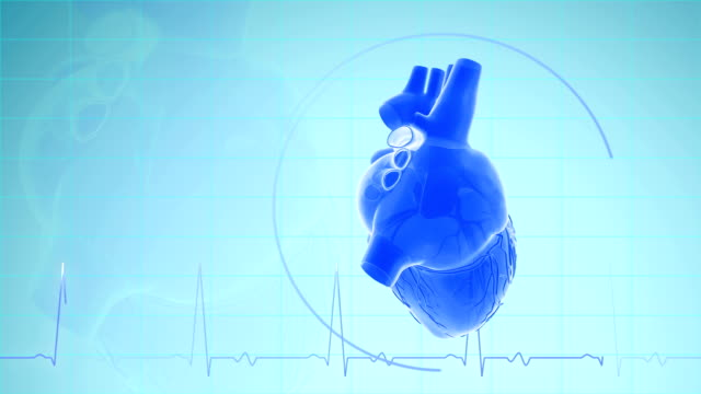 heartbeat with pulse waveform - human heart stock videos & royalty-free footage