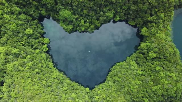 heart-shaped lagoon on a tropical island / koror, palau - island stock videos & royalty-free footage