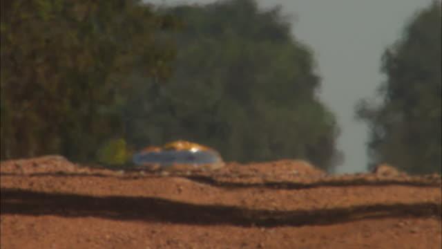 vídeos de stock, filmes e b-roll de a heat wave shimmers as an suv kicks up dust on a dirt road. - estrada rural