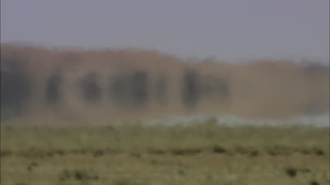 heat waves blur the shapes of the landscape. - heat stock videos & royalty-free footage
