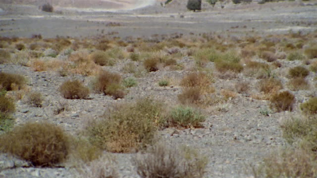 ws tu recreation heat waves rising from land near middle eastern desert town / iran - see other clips from this shoot 1007 stock videos & royalty-free footage