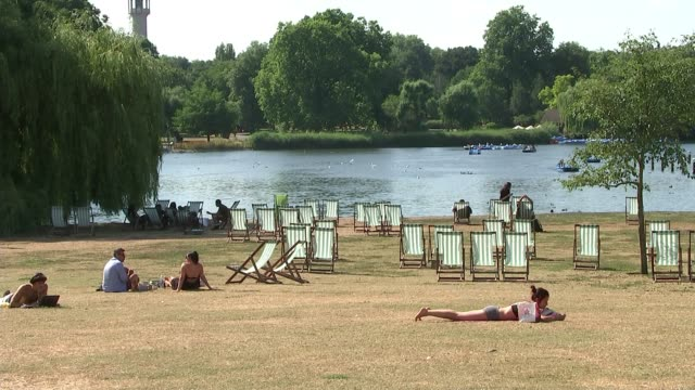 vídeos de stock, filmes e b-roll de people urged to be careful in the sun and to look out for wildlife uk london wimbledon / regent's park / surrey windlesham people sunbathing and in... - onda de calor fenômeno natural