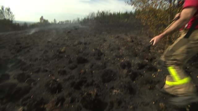 lancashire fires continue as new blaze near chorley started deliberately; uk, lancashire: firefighters tackling fire, spraying water, burnt trees,... - itv weekend late news点の映像素材/bロール
