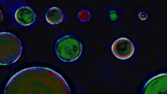 stark painted abstrakte kreise hintergrund pan in siebdruck - handcoloriert stock-videos und b-roll-filmmaterial