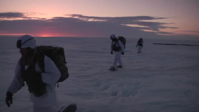 stockvideo's en b-roll-footage met heavy cargo drop followed by airborne soldiers jumping at the deadhorse drop zone and uh-60 arctic operations at arctic pegasus 2014. this mobility... - alaska verenigde staten