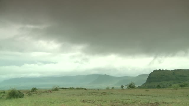heavy clouds move rapidly over the plains of ethiopia. available in hd. - アフリカの角点の映像素材/bロール
