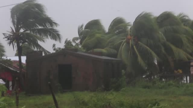 heavy rain and high winds lash nicaragua's northern coast as hurricane eta passes near bilwi, damaging houses and forcing people indoors to wait for... - managua stock videos & royalty-free footage