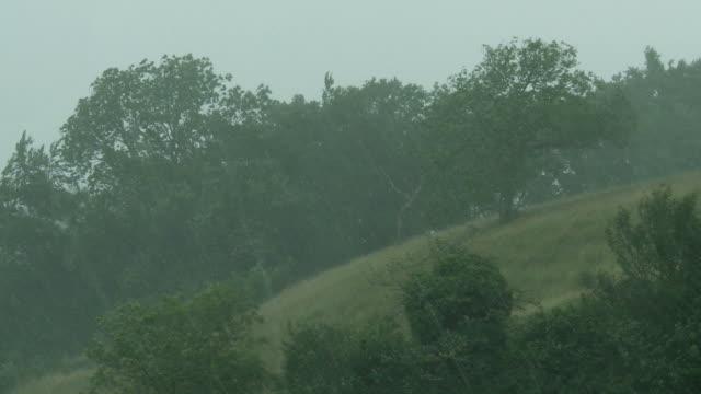 heavy rain and storm