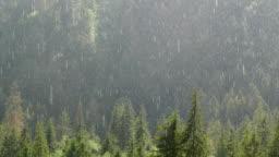 Heavy rain comes