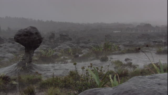 Heavy rain falls on a rocky landscape on Auyantepui. Available in HD.