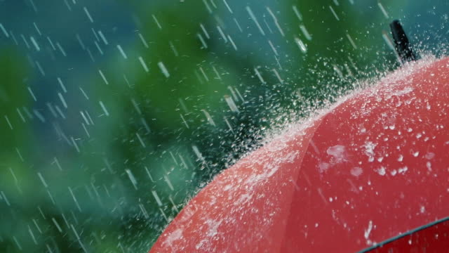 heavy rain falls on red umbrella - protezione video stock e b–roll