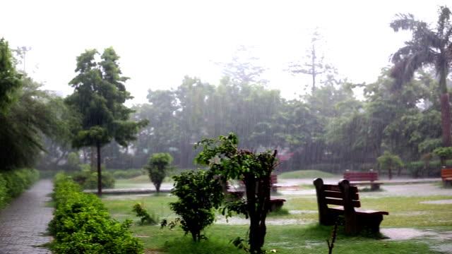 heavy rain in public park - torrential rain stock videos & royalty-free footage