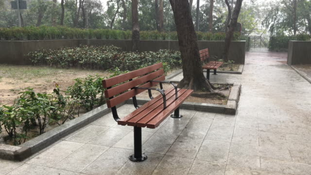 Heavy Rain on Park Bench