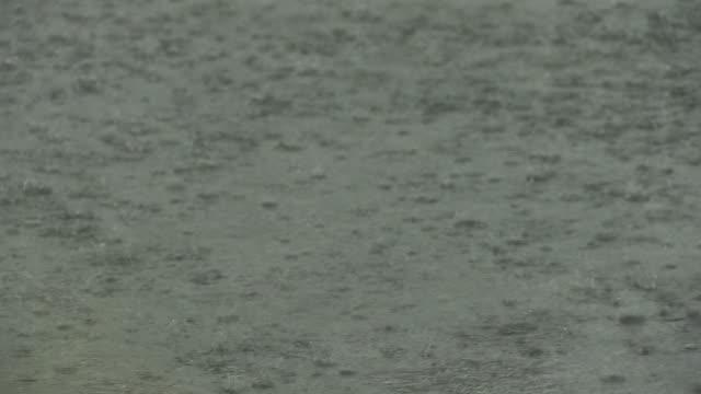 Heavy Rain Pelting On Street, Gunma, Japan