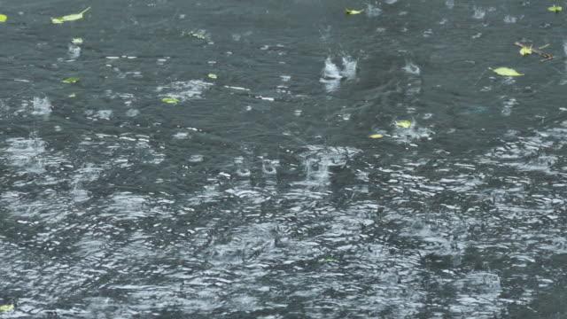 vídeos y material grabado en eventos de stock de lluvia fuerte - asfalto
