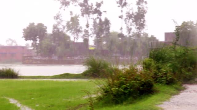 heavy rain - tropical storm stock videos & royalty-free footage