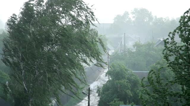 Heavy Rain With Wind