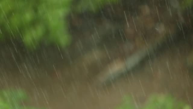 heavy rains from a severe thunderstorm - midwest usa stock videos & royalty-free footage