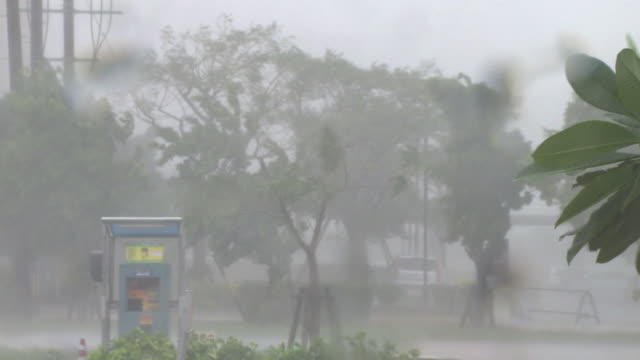 heavy rainstorm by typhoon, okinawa, japan - typhoon stock videos and b-roll footage