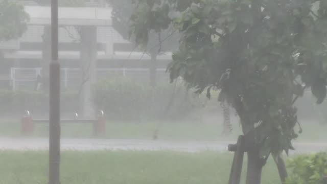 heavy rainstorm by typhoon, okinawa, japan - typhoon stock videos & royalty-free footage