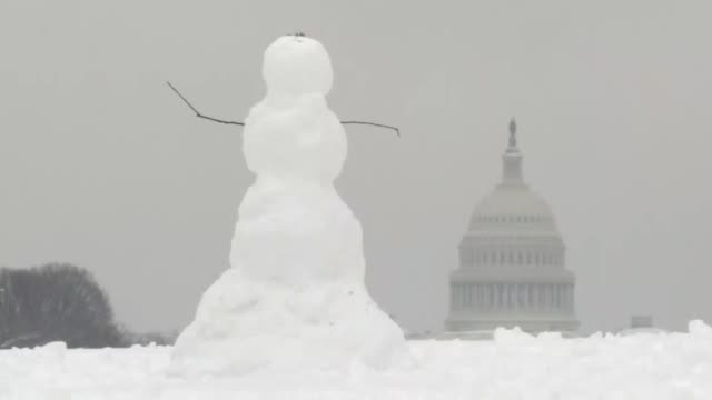 Heavy snow blankets Washington USA on January 13 2019