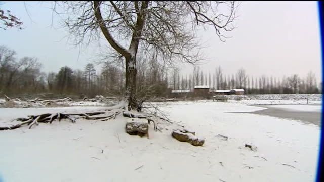 vidéos et rushes de heavy snow falls across england and wales england snowcovered path and bench in park frozen lake ducks in lake bare tree branches pan frozen lake - bare tree
