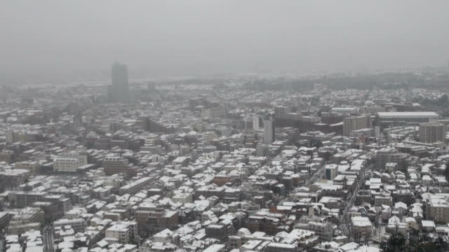 heavy snow hit many areas of eastern and northeastern japan on monday, including downtown tokyo and other locations usually unaccustomed to snowfall,... - kanto region stock videos & royalty-free footage