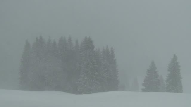 heavy snowfall, blizzard