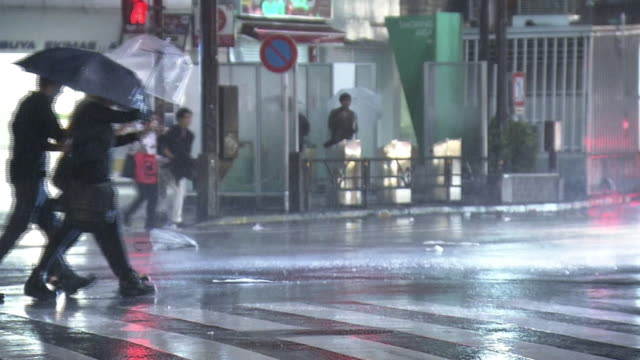 heavy storm by typhoon in shibuya, tokyo, japan - typhoon stock videos and b-roll footage