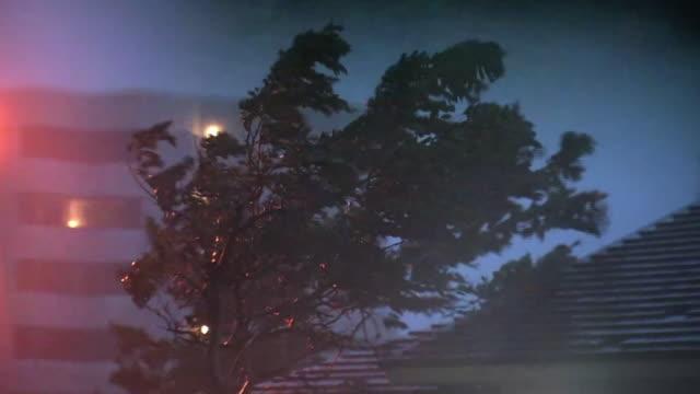 heavy storm by typhoon, okinawa, japan - typhoon stock videos & royalty-free footage