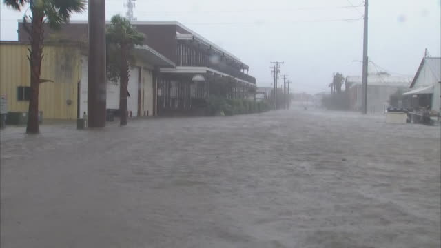 heavy winds rain and flooding during hurricane michael in apalachicola florida on october 10 2018 - environment or natural disaster or climate change or earthquake or hurricane or extreme weather or oil spill or volcano or tornado or flooding stock videos & royalty-free footage