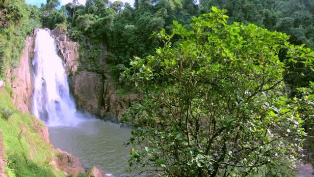 heaw narok waterfall. - recreational horseback riding stock videos and b-roll footage