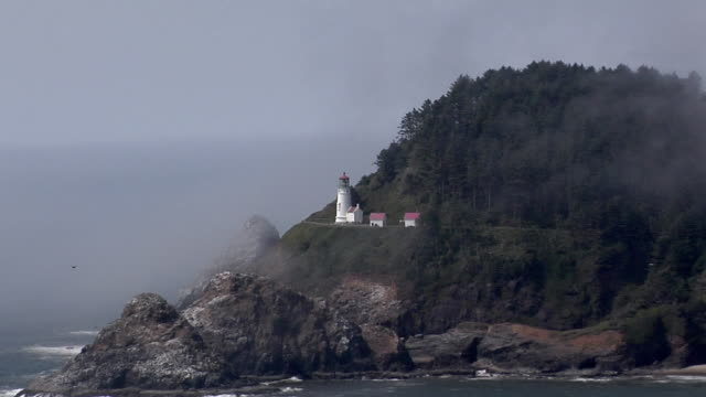 zo, ws, heceta head lighthouse, oregon coast, oregon, usa - heceta head stock videos & royalty-free footage