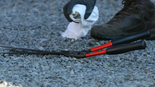 hedge shears - secateurs stock videos & royalty-free footage