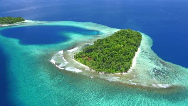 vidéos et rushes de hele islands, marovo lagoon - partie d'une série