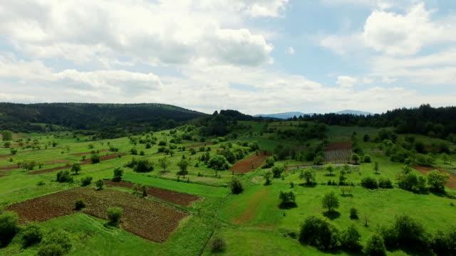 Heli Schuss von einer saftig grüne Landschaft