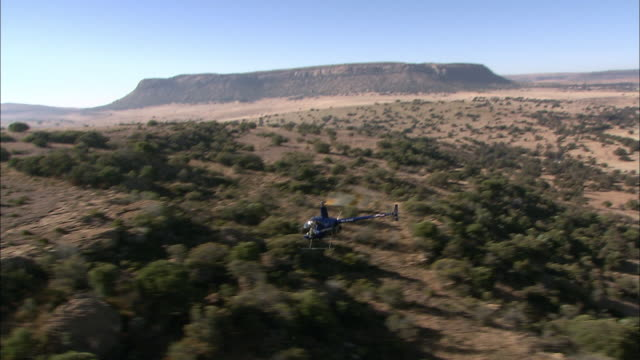 a helicopter flies over a game reserve in south africa. - grass area stock videos and b-roll footage