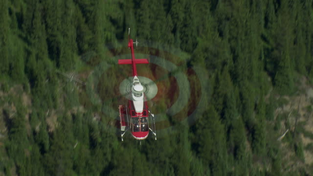 helicopter flies over forest in alberta canada - helicopter stock videos and b-roll footage