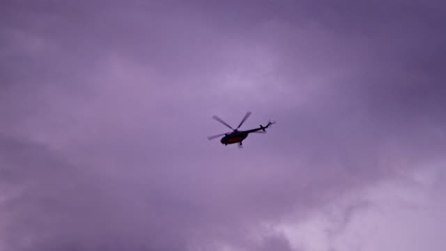helicopter flying above treetops. dusk - low angle view stock videos & royalty-free footage