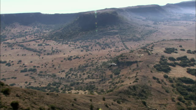 ws ts pov zi aerial helicopter flying over kruger national park / kruger national park, mpumalanga, south africa - krüger nationalpark stock-videos und b-roll-filmmaterial