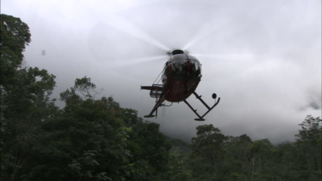 a helicopter lands in a jungle clearing. - helicopter stock videos & royalty-free footage