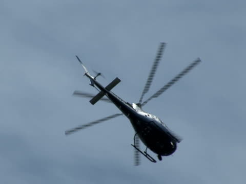 Helicopter Leaves