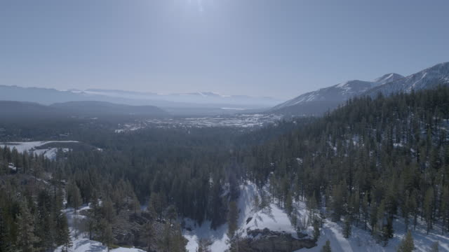 helicopter point of view of forest and mountains against sky during winter - helicopter point of view stock videos & royalty-free footage