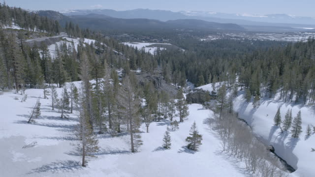 helicopter point of view of forest and snowcapped mountains against sky - helicopter point of view stock videos & royalty-free footage