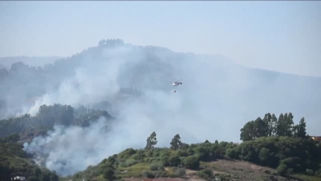 helicopters and canadair aircrafts battle blazes in guia on the canary islands - guia stock videos & royalty-free footage