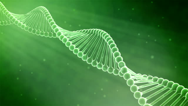 hd : 3d dna helix animation, loop-able. - helix model stock videos & royalty-free footage